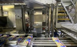 Yoghurt FFS and Ice Lolly Lines, and Packaging Equipment (17)