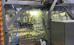 Yoghurt FFS and Ice Lolly Lines, and Packaging Equipment (19)