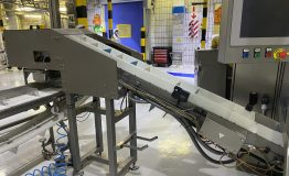 Yoghurt FFS and Ice Lolly Lines, and Packaging Equipment (4)